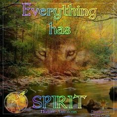 Everything Has Spirit--Micki Cherokee Angel Deppe Photo Native American Images, Native American Tribes, Animal Spirit Guides, Spirit Animal, Celtic Christianity, Myth Stories, Wolf Quotes, Wolf Spirit, Ring True