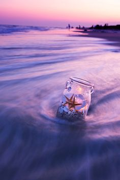 Jar with starfish and sand dollars on beach at sunset