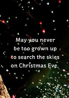 """""""May you never be too grown up to search the skies on Christmas Eve. Click through to see more festive Christmas quotes and sayings! quotes christmas thoughts These Festive Christmas Quotes Will Get You in the Holiday Spirit ASAP Holiday Quotes Christmas, Merry Christmas Eve, Christmas Wishes, Christmas Holidays, Holiday Sayings, Christmas Jokes, Christmas Ideas, Christmas Scenes, Quotes About Christmas"""