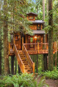 Patti Payne's Cool Pads- Enchanting sanctuary in the woods with luxury treehouse - Puget Sound Business Journal