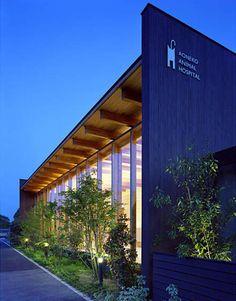 あおねこ動物病院: 柳瀬真澄建築設計工房 Masumi Yanase Architect Officeが手掛けた家です。