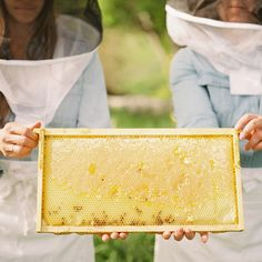 Adopt A Hive today at Queenfarina.com best way to support honeybees!