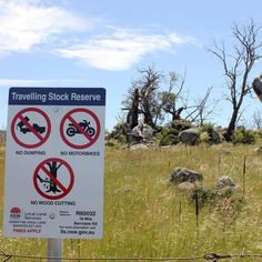 Aboriginal custodians believe a massive dieback of Manna Gum in Monaro is the result of a lack of traditional burning practices.