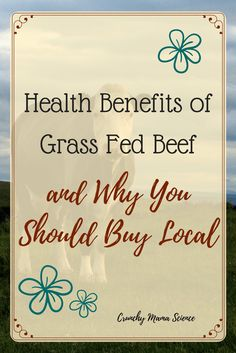 Learn the health benefits of grass fed beef and the reasons to buy from a local rancher