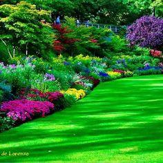 """""""Faz de tua vida o jardim das mais lindas flores. Escolhe cultivar Amor, Gratidão e Bondade. Assim, jamais colherás ervas daninhas.""""  Nicoli Miranda  O Jardim de Lorenzo"""