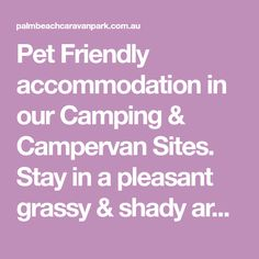 Pet Friendly accommodation in our Camping & Campervan Sites. Stay in a pleasant grassy & shady area with full access to all amenities. Pet Friendly Accommodation, Camping Ideas, Campervan, Campsite, Palm Beach, Camping