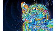 Cool-Cat-Abstract-4K-Wallpaper.jpg (3840×2160)