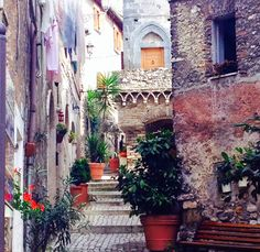 GardenEnvy: It Was In The Stars: A Visit To The Italian Garden Of Villa D'Este