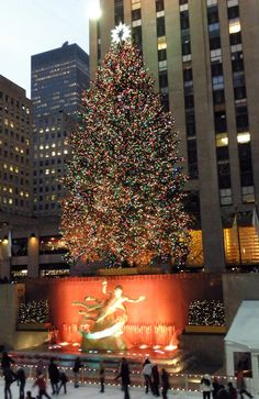 New York City Christmas Tree at Rockefeller Center