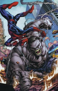 Grey Hulk vs Spider-man. It's too amazing!