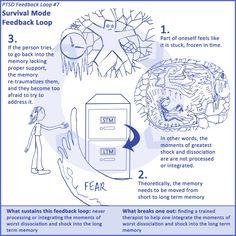 Survival Mode Feedback Loop