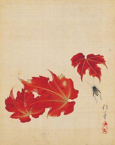 Sakai Hoitsu. Autumn leaves. Japanese painting. Edo period. 絵手鑑」のうち「紅葉に鈴虫」 酒井抱一 江戸時代・19世紀 静嘉堂文庫美術館蔵 【後期展示:11月25~12月23日】