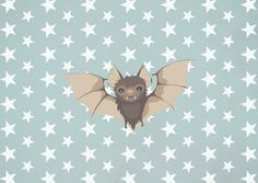 Bat by Mr And Mrs Quirynen