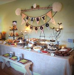 owl party decorations baby shower | Owl themed baby shower | Party Ideas
