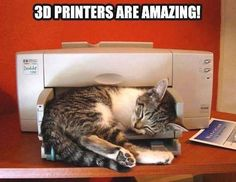 Instant purchase: printer that prints kittens!