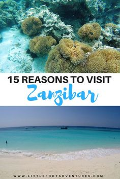 Summer is not over yet! The beautiful island of Zanzibar in Tanzania it's a dream destinations. I'm giving you 15 reasons beyond the white sandy beaches and the turquoise water to visit to book the next flight!