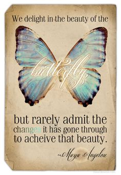"""""""We delight in the beauty of the butterfly, but rarely admit the change it had to go through to acheive that beauty."""" ~Maya Angelou"""