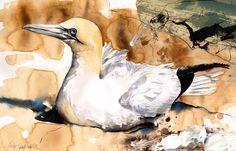 "Saatchi Online Artist: Lucy Newton; Paint, Mixed Media ""gannet"""