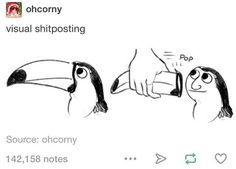 GUYS WAIT, NO. YOU DONT UNDERSTAND. THEIR BEAK IS 95% OF THEIR SKULL