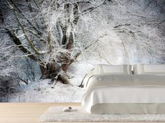Willow tree in winter Wall Mural