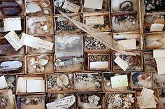 gidon bing - artist - collections