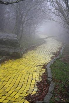 I finally decided my future lies beyond the yellow brick road. EJ