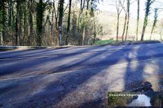 Strecke Bonn-Oberkassel - Kloster Heisterbach 02.02.2014 - von unten kamen wir, wir gehen direkt gegenüber wo ich jetzt stehe wieder in den Wald hinein