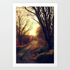 Follow the Glowing road  Art Print by Annie Japaud   - $18.72