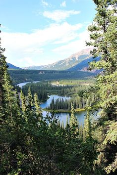 Horseshoe Lake in Denali Guide to visiting Denali as a Budget Traveller via The World on my Necklace