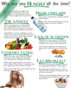 Why are you hungry all the time ? && Link: Best Foods for Quick Weight Loss