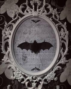 DIY vegan taxidermy  // Vintage frame with fake taxidermy bat // gothic room // design  by aderhine