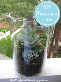 the Woodward Place: DIY Terrarium