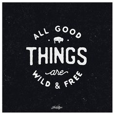 All good things are wild and free (282/365) #hndrntypeproject365…