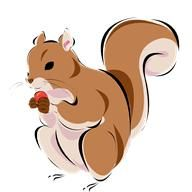 """""""An Ambulance For Chauncy"""": In a recent story, Rachel Rabbit had made a new friend - Chauncy Squirrel.  Chauncy was an old squirrel and had recently injured one of his legs in a fall from a pine tree.  Rachel was concerned about him and went to visit Brigit Badger - the Ballymore doctor...."""