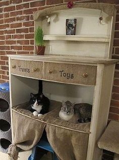 Vintage kitty condo- for foster cat room?