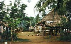 rustic pathways embera village panama - Google Search