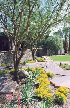 low maintenance front yard landscaping ideas hardscape landscape ideas basic landscaping ideas #Landscaping