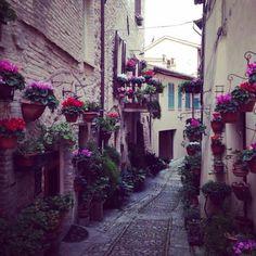 Spello, Perugia. Foto della nostra utente Adriana