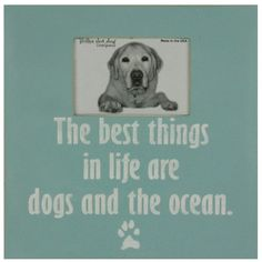 The best things in life are dogs and the ocean. SO True.