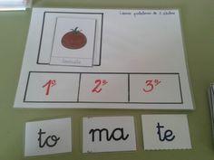 Conciencia fonológica palabras trisílabas