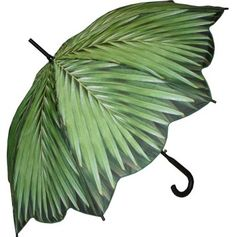 Full Size Palm Tree Umbrella - Fine Art & Print Umbrellas - Umbrellas - Raindrops Umbrellas & Rainwear Canada