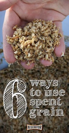 6 Ways to Use Your Spent Grain (After Brewing a Batch of Beer) #homebrewing
