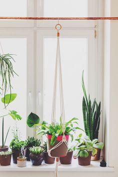 studio {hammel} plant hanger. www.studiohammel.de #studiohammel #planthanger #blumenampel #copper #macrame
