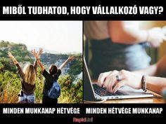 Uni, Everything, Polaroid Film, Jokes, Marketing, Humor, Comics, Husky Jokes, Humour