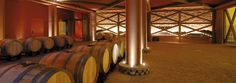 The ageing cellar