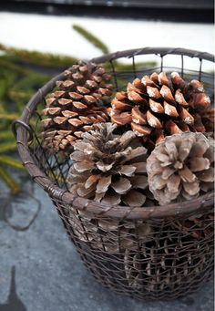 Cones in iron basket. Add christmas lights for a nice porch decoration !