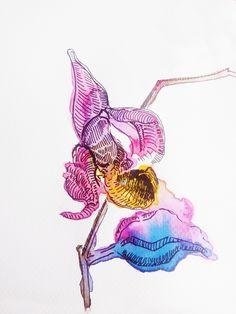 ada k. Watercolour, Watercolor, Watercolor Painting, Watercolor Art, Water Colors, Watercolors