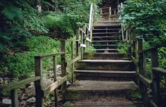 Tippy Dam   Pure Michigan   The Stairway at Tippy Photo by Ashley Clark -- National Geographic Your Shot