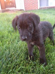 Cute little Cole