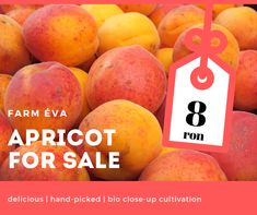 delicious, hand-picked apricot for sale, price 8 ron Fresh Fruits And Vegetables, Canning, Food, Essen, Meals, Home Canning, Yemek, Eten, Conservation